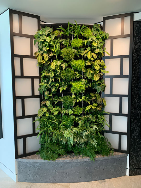 Interior view of living wall